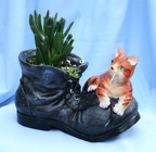 Succulent Boot Buddy Cat from Mischler's Florist and Greenhouses in Williamsville, NY