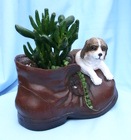 Succulent Boot Buddy Dog from Mischler's Florist and Greenhouses in Williamsville, NY