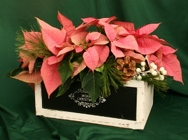Christmas Crate Triple from Mischler's Florist and Greenhouses in Williamsville, NY