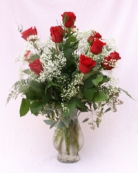 Premium Dozen from Mischler's Florist and Greenhouses in Williamsville, NY