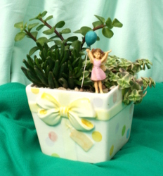 Succulent Happy Birthday from Mischler's Florist and Greenhouses in Williamsville, NY