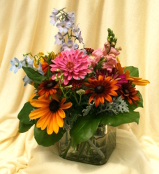 Mischler's Magic from Mischler's Florist and Greenhouses in Williamsville, NY
