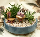 Succulents - Quiet Reflections from Mischler's Florist and Greenhouses in Williamsville, NY