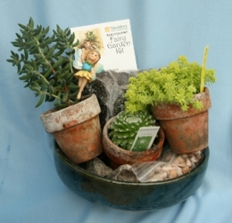Mini Garden Succulent Kit