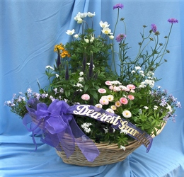Perennial Basket from Mischler's Florist and Greenhouses in Williamsville, NY